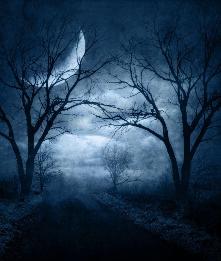 Halloween Night #2